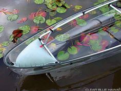 """See Through Kayaks--because I'm not freaked out enough by """"what's below""""!"""