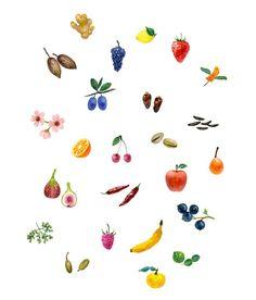 Gems: Fruits & Veggies