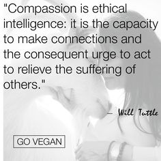 "ALL animals -- human AND nonhuman -- want to love, be loved, and enjoy their freedom. BE VEGAN and end the part YOU play in upholding ""acceptable"" violence, animal cruelty, and exploitation inside cultural ""norms"" of society. Acknowledge the VICTIMS of your eating habits, etc., and turn your heart towards justice rather than injustice. It's never too late to learn reverence for life. www.vegankit.com, www.freefromharm.org, & www.howtogovegan.org"