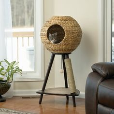 """You'll love the 44"""" Sphere Scratch Post Cat Tree at Wayfair - Great Deals on all Pet products with Free Shipping on most stuff, even the big stuff."""