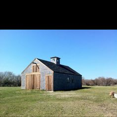 Dog walk by the barn on Nantucket island
