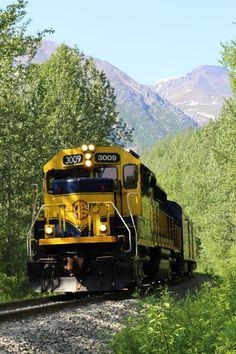 TripAdvisor - The Alaska Railroad's Hurricane Turn Train, the Attraction in Talkeetna, Alaska! Alaska Cruise, Alaska Travel, Alaska Trip, Talkeetna Alaska, Alaska Railroad, Alaska Highway, Alaska Adventures, Living In Alaska, Us Destinations