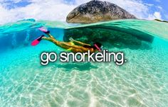 go snorkeling -- ✔ in the Caribbean