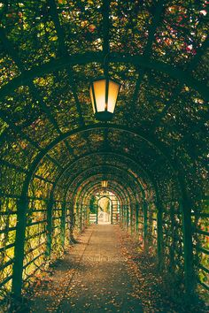 Dark green tunnel lamps and small lights by behindmyblueeyes, $4.00