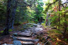 Essential Weekend Guide to Acadia National Park and Bar Harbor Maine » Carry-On Traveler Acadia National Park, National Parks, Bar Harbor Maine, Country Roads, Travel, Viajes, Destinations, Traveling, Trips