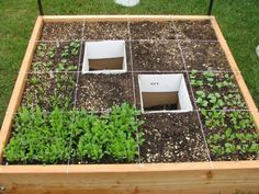 """square foot gardening: """"50 % of the Cost, 20% of the Space, 10% of the Water, 5% of the Seeds, 2% of the Work"""" also see www.squarefootgardening.org"""