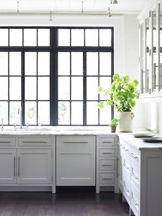 Floors | Cabinets | Windows