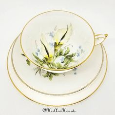 Antique Paragon Star China Hand Painted Tea Plate Ditsy Roses Border