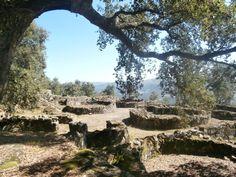 A Citânia de Briteiros é um dos conjuntos arqueológicos da cultura castreja do Norte Peninsular mais emblemáticos! As ruínas arqueológicas da Citânia situam-se no Monte de São Romão, a uma altitude…