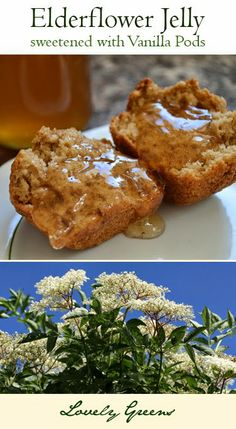 Elderflower & Vanilla Jelly Recipe ~ sweet, flowery, and delicate. Perfect for spreading on cakes, muffins, scones, and pancakes!