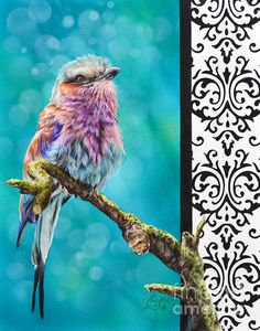 damask bird in colored pencil and airbrush by Lisa Clough Lachri.  beautiful!