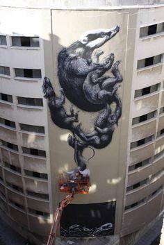 ROA New Mural In Malaga, Spain StreetArtNews