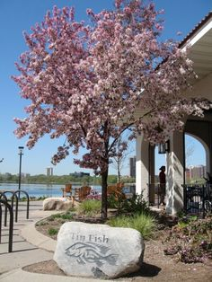 It's patio season in Minnesota, and in the Land of 10,000 Lakes, that means waterfront patios are the most sought after places to spend a few hours in the evenings and on weekends.