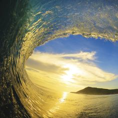 wslofficial:  Golden age.Photo by Henrique Pinguim  Surf / Skate...