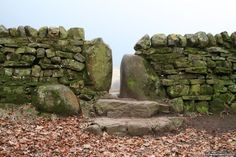 The natural beauty of a dry stone wall - [photographed by Edward Whitfield]
