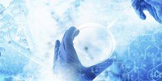 Biyomühendisler Gaziantep'te Biyopreparat Üretim Tesisi Kuracak