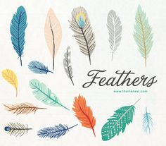 CLIP ART - Feathers - for commercial and personal use