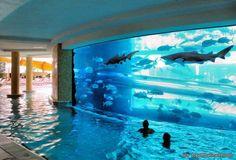 pool via topoftheline99.com