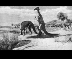 Hadrosaurus  by Charles R. Knight (1874-1953)  from National Geographic  1919 United States