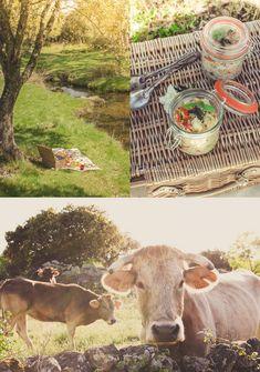 Revelando Sabores: {MENÚ PICNIC I} Ensalada de quinoa