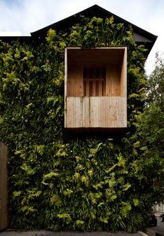 adriana barra's store | green wall | balcony #home #deco