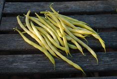 'Soliel' is a beautiful yellow bush bean. The bright color stands out against the foliage, so they're easy to keep picked.grow-it-organ. Growing Green Beans, Bean Varieties, Bush Beans, Garden Planning, Asparagus, Healthy Eating, Herbs, Gardening, Bright