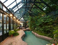 Pool in greenhouse structure
