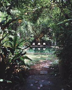 Woke up in Sri Lankan paradise  @elsewhere by tuulavintage
