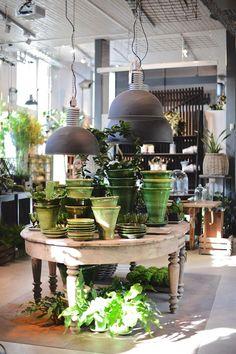 Zetas Trädgårdsbutik I Victoria Skoglund Flower Shop Interiors, Garden Center Displays, Flower Shop Design, Retail Merchandising, Garden Shop, Store Displays, Commercial Design, Store Design, Coffee Shop
