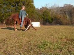 Parelli Natural Horse Training with Hannah and her horse Blaze