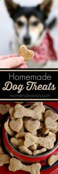 Homemade Dog Treats Recipe- with just 4 ingredients, these dog biscuits are easy to make  a treat your dog will love!
