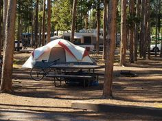 Grant Campground Near lake and close to old faithful