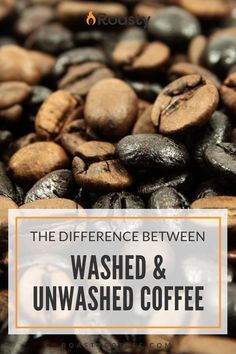 Understand the bean to know what goes into your cup of joe. Each one has a unique flavor and understanding them will guide you in your choice and help you to grow in appreciation for every cup. Espresso Recipes, Coffee Recipes, Smoothie Drinks, Smoothie Recipes, Craving Coffee, Coffee Guide, Coffee Facts, Coffee Health Benefits, Coffee Dessert