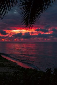 Red sky at night. Sunset on the north shore of Oahu. By - Kelly Headrick Beach Sunset Wallpaper, Ocean Wallpaper, Summer Wallpaper, Beautiful Nature Wallpaper, Beautiful Landscapes, Aesthetic Backgrounds, Aesthetic Wallpapers, Sunset Photography, Landscape Photography