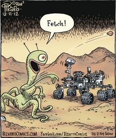 What Martians Think of Curiosity.