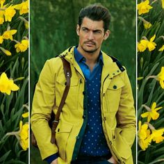 "Gerdes1Gerdes (@g.gerdes) on Instagram: ""The inspiring yellow. Color of sunshine, luck and more .... :-) #davidgandy for #selected 2014…"""