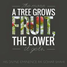 The Official MFI® Blog Quote of the Day: 'The more a tree grows fruit, the lower it gets.' - His Divine Eminence Gohar Shahi #tree #nature #naturequotes