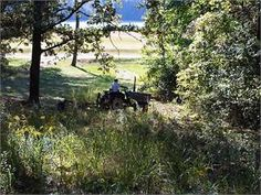 Fulton, Itawamba County, Mississippi Land For Sale - 45 Acres