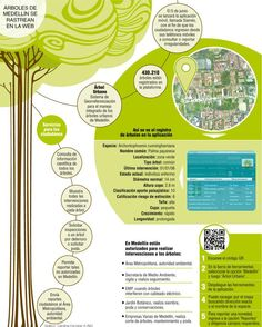 En una aplicación los medellinenses pueden hacerle seguimiento a las podas y talas de los árboles. También pueden ver la composición detallada de cada árbol de la ciudad.