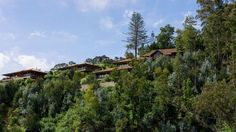 Resort Hotels: Find Paradise at Choupana Hills Madeira Island | #hotelinteriordesigns #lboutiquehotels #luxuryhotels| See also: http://hotelinteriordesigns.eu/ @choupanahills