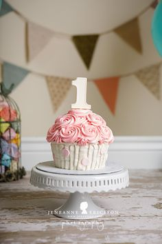 Jeneanne Ericsson Photography » pink white and teal giant cupcake cake smash