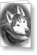 Greeting Cards - Expressive Siberian Husky Mixed Media A4617 Greeting Card by Mas Art Studio, #GreetingCards #Cards #Photo #Husky #Modern #Expressive  #MasArtStudio #WallArt #ArtForSale#MarthaAnnSanchez   #Gestural #Interiors #ArtLoversOnline#CanvasPrint   #GicleePrint #Black #White #Wildlife #New    #Art