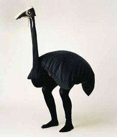 Funny unusual stork
