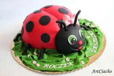 ArtCiacho: Tort biedronka
