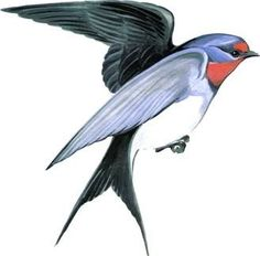 Картинки для игр и творчества | 153 photos | VK Animal Stencil, 1, Clip Art, Birds, Artwork, Nature, Painting, Kindergarten, Embroidery