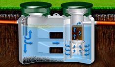 принцип работы септика Septic Tank, Water Bottle, Drinks, Plants, Water Bottles, Drink, Beverage, Drinking