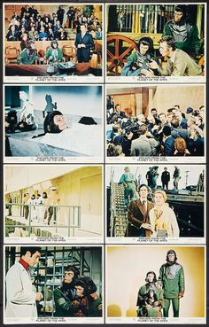 """Escape from the Planet of the Apes (20th Century Fox, 1971). Lobby Card Set of 8 (11"""" X 14""""). Science Fiction.  Starring Roddy McDowall, Kim Hunter, Bradford Dillman, Sal Mineo, Ricardo Montalban, Natalie Trundy, Eric Braeden, William Windom, and Albert Salmi. Directed by Don Taylor."""
