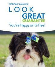 Petsmart grooming ad