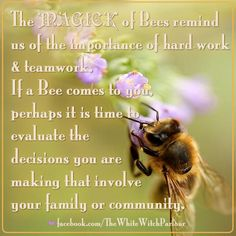 animal, insect, spiritual, meaning, totem, magick, witch, nature, bee, bumble, signs, witch, wisdom, old witchery, book of shadows, wicca, teamwork, inspiration, guidance, divine, symbolism facebook.com/thewhitewitchparlour