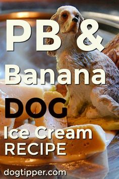 Peanut Butter & Banana Dog Ice Cream Recipe is part of Dog ice cream recipe - In just a few minutes, prepare peanut butter and banana dog ice cream for your dog! Peanut Butter For Dogs, Peanut Butter Ice Cream, Peanut Butter Banana, Dog Popsicles, Banana Popsicles, Dog Treat Recipes, Dog Food Recipes, Baby Recipes, Puppy Ice Cream